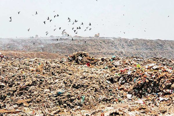Landfill site development